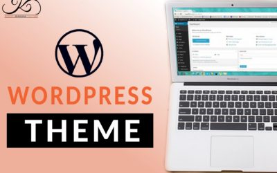 What is WordPress Theme
